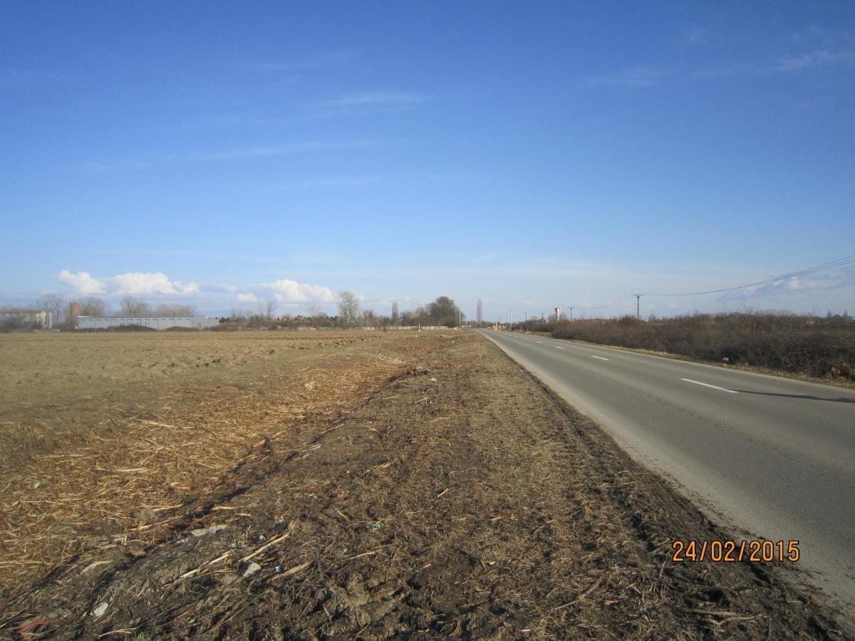 Drum Sicula3.JPG