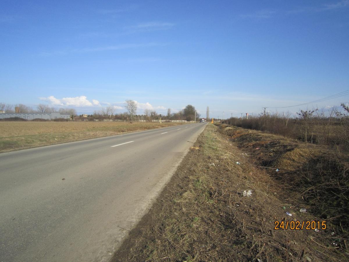 Drum Sicula7.JPG