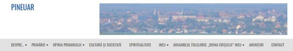 www.pineuar.ro
