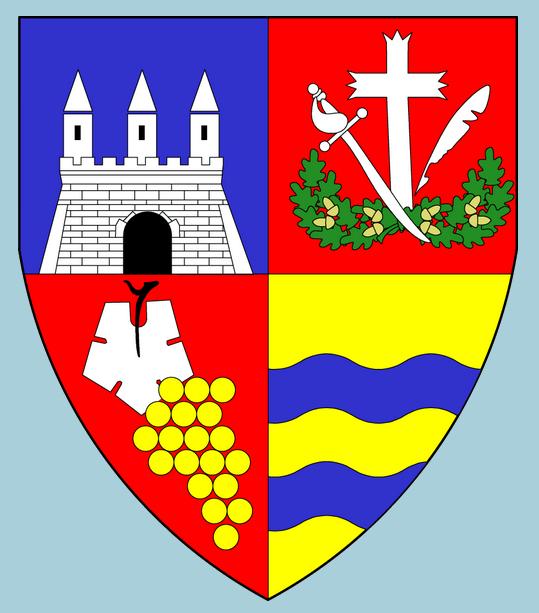 Județul Arad