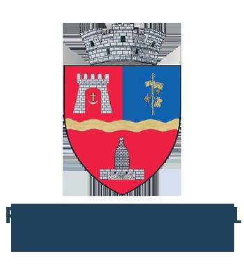 Servicii Online – Primăria Orașului Ineu